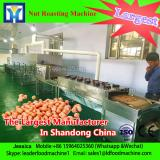Belt vacuum continuous fishfood dryer machine of stainless steel