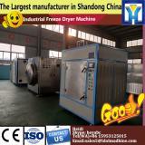 China fruits freeze dryer equipment