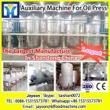 High quality indonesia palm oil processing line