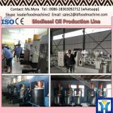 100TPD crude palm oil refinery malaysia