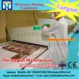 China professional supplier microwave sesame seed food roaster/sesame seed roasting machine SS304