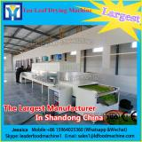 Low Price Vacuum Dryer For Fruit And Vegetable