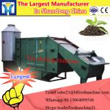 Microwave Fruit and Vegetable Sterilizing Machine