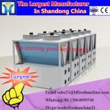Industrial microwave vacuum fruit dryer